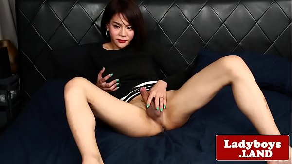 Trans, Thai shemale, Thai ladyboy