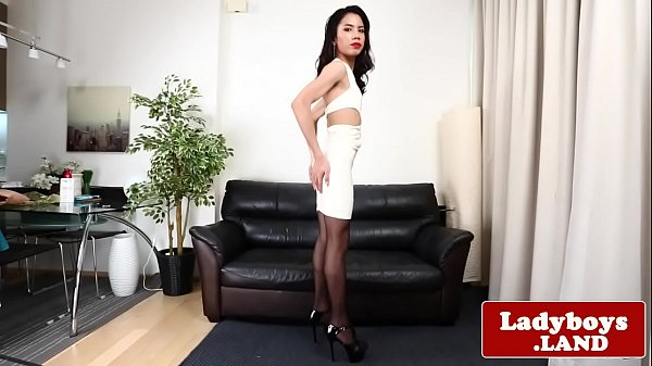 Shemale, Tgirls, Solo stocking, Thai shemale, Thai ladyboy